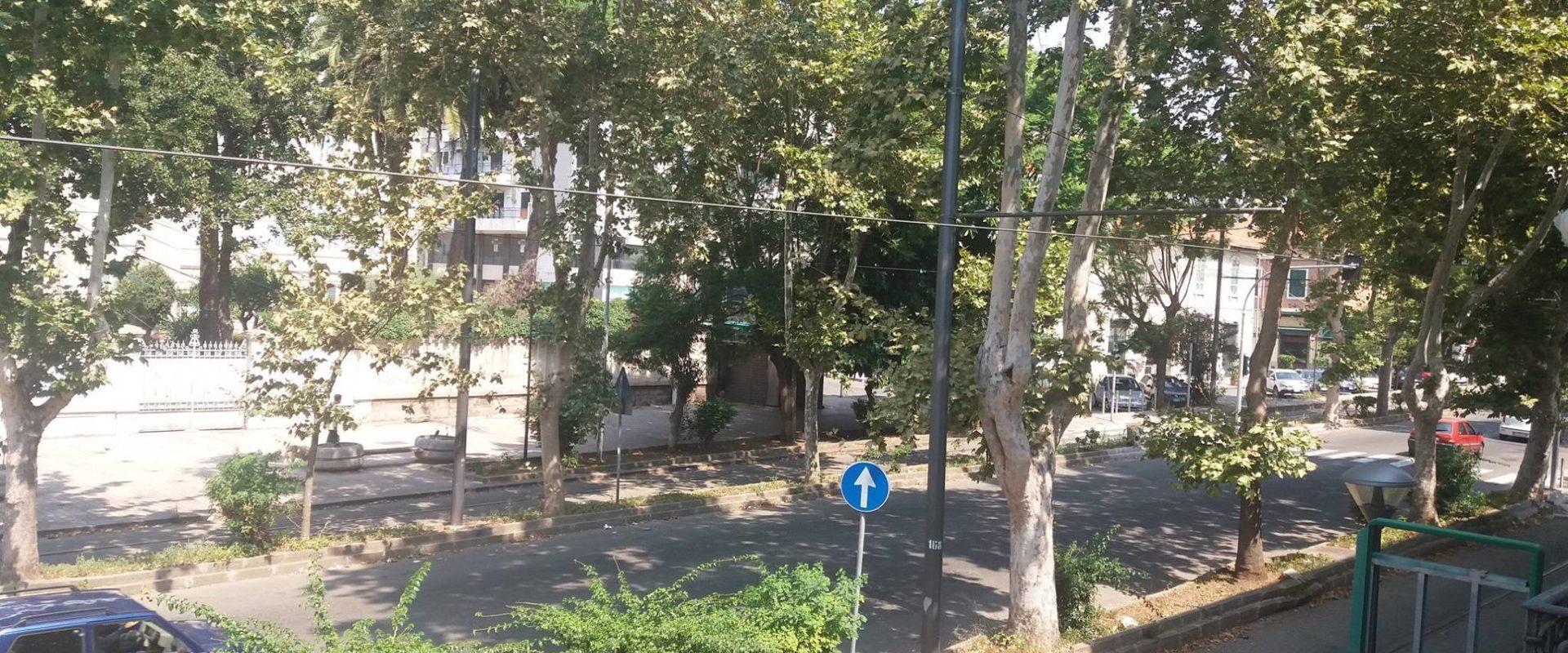 Appartamento in affitto sul Viale San Martino