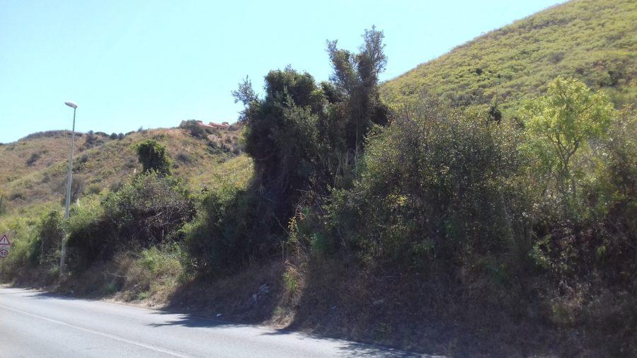 Terreno agricolo Timpazzi Messina