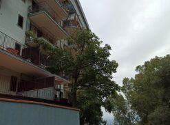 Appartamento Altro Parnaso #VT16760